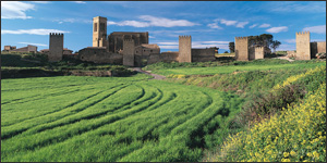 Central Zone: villages, castles and monasteries in Navarre